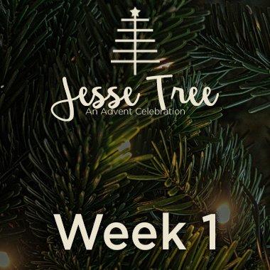 Jesse Tree Web 1