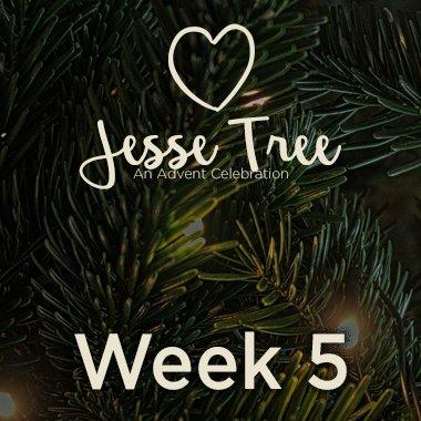 Jesse Tree Web 5