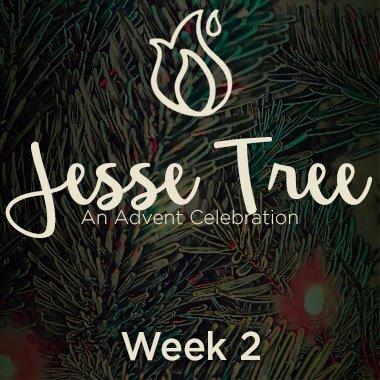 Jesse Tree 2020 Web 2